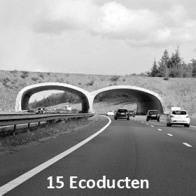15 Ecoducten in Nederland